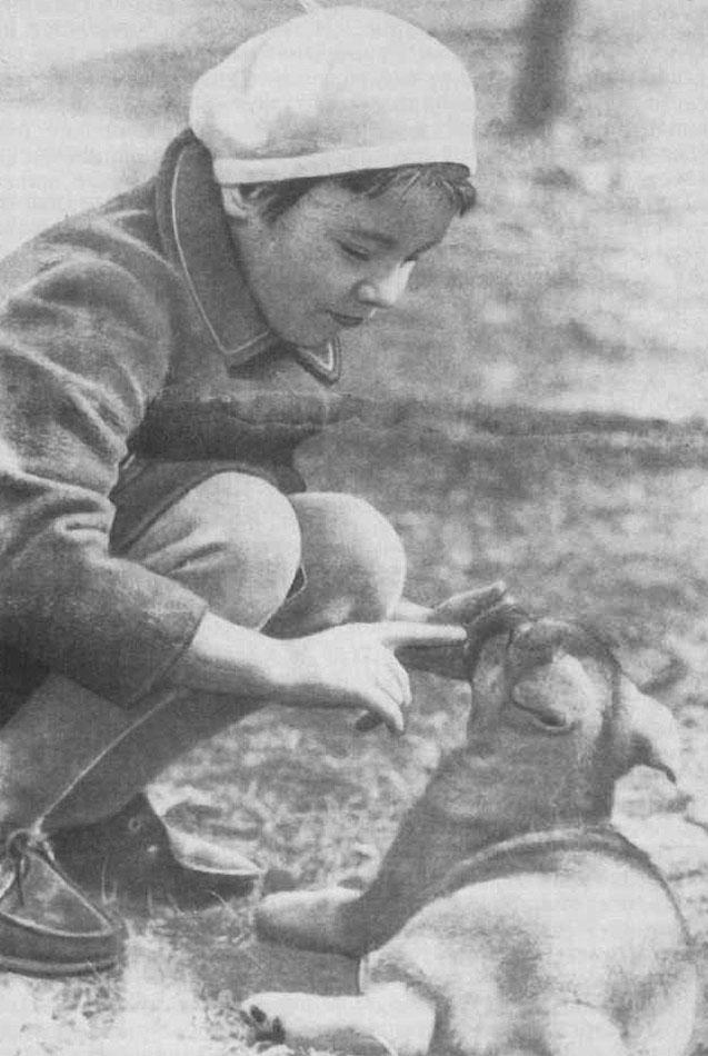 знакомим детей с миром животных