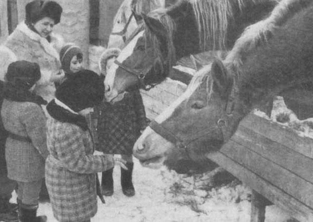 золотова знакомим дошкольников с животными