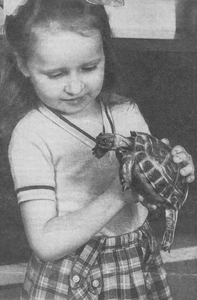 и золотова знакомим дошкольников с миром животных просвещение 1988